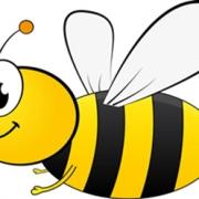 蜜蜂链bee怎么样 bee注册教程