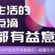 赛维宇宙 米宇宙公链NFT项目 注册送100动力 直推50%收益
